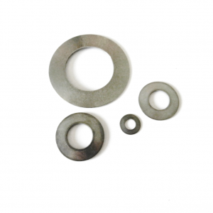 Stainless Steel Disc Spring Washers